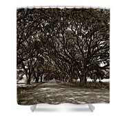 The Deep South Bw Shower Curtain