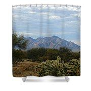 The Desert Landscape Shower Curtain
