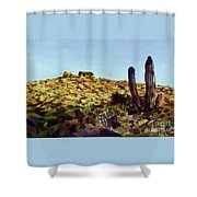 The Desert Place Shower Curtain