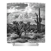 The Desert Speaks Shower Curtain