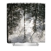 The Devic Pool 2 Shower Curtain