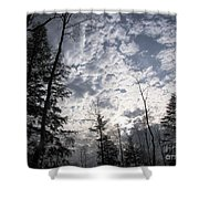 The Devic Pool 3 Shower Curtain