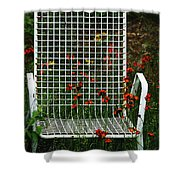 The Devils Chair Shower Curtain