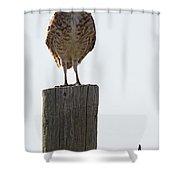The Di Shower Curtain