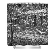 The Dogwoods Are Blooming It Must Be Spring. Shower Curtain