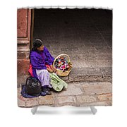 The Doll Peddler Shower Curtain