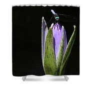 The Dragonfly And The Water Lily  Shower Curtain