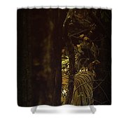 The Dramatic Silence Shower Curtain
