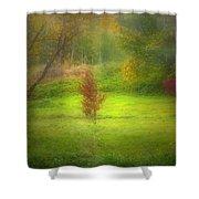 The Dream Field Shower Curtain