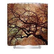The Dream Oak Triptych Left Panel Shower Curtain
