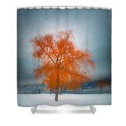 The Dreams Of Winter Shower Curtain