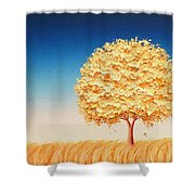 The Dreams We Carry Shower Curtain