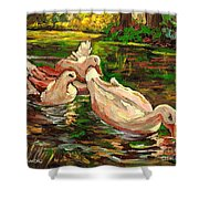 The Duck Pond At Botanical Gardens Shower Curtain