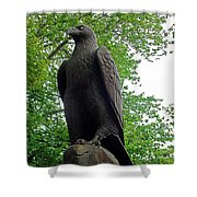 The Eagle 1 Shower Curtain