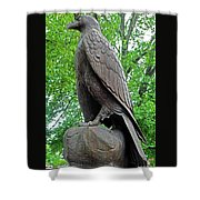 The Eagle 2 Shower Curtain