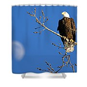 The Eagle Has Landed Shower Curtain