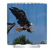 The Eagle Is Landing Shower Curtain