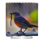 The Early Bird Shower Curtain