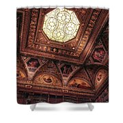 The East Room Ceiling Shower Curtain