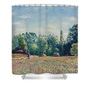 The Edge Of The Forest 2 Shower Curtain