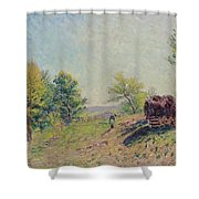 The Edge Of The Forest Shower Curtain