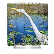 The Egret And The Dragonfly Shower Curtain