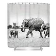 The Elephant Family Shower Curtain