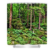 The Enchanted Forest Shower Curtain