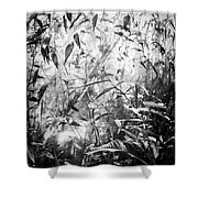 The Enchanted Greenhouse Shower Curtain
