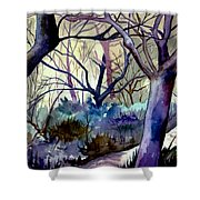 The Enchanted Path Shower Curtain