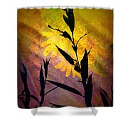 The End Of Summer Shower Curtain