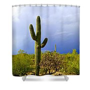 The End Of The Storm Shower Curtain