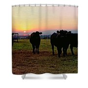 The End To A Long Day Shower Curtain
