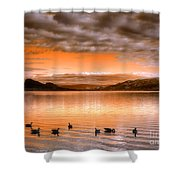 The Evening Geese Shower Curtain