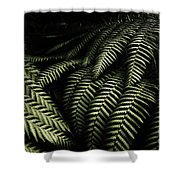 The Exotic Dark Jungle Shower Curtain
