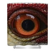 The Eye Of The Crane Shower Curtain