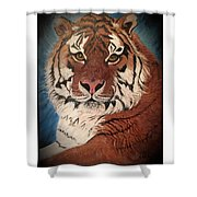 Boldness Unchained Shower Curtain