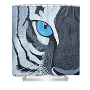 The Eye Of The Tiger Shower Curtain