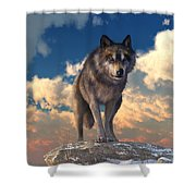 The Eyes Of Winter Shower Curtain