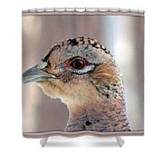 The Face Of Beauty Shower Curtain