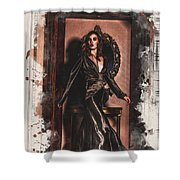 The Fairy Godmother Shower Curtain