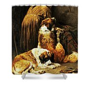The Faith Of Saint Bernard Shower Curtain