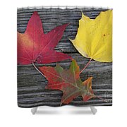 The Fallen Leaves Of Autumn Shower Curtain