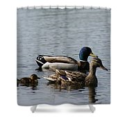 The Family # 2 Shower Curtain