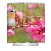 The Feminine Touch Shower Curtain