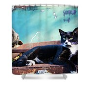 The Ferals-1400 Shower Curtain