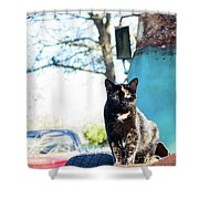 The Ferals-1402 Shower Curtain