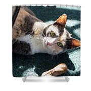The Ferals-1407 Shower Curtain