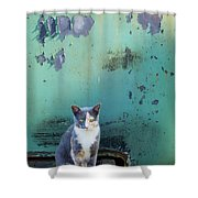 The Ferals-1420 Shower Curtain