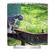 The Ferals-1424 Shower Curtain
